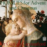 Homilies for Advent and Christmas artwork 2